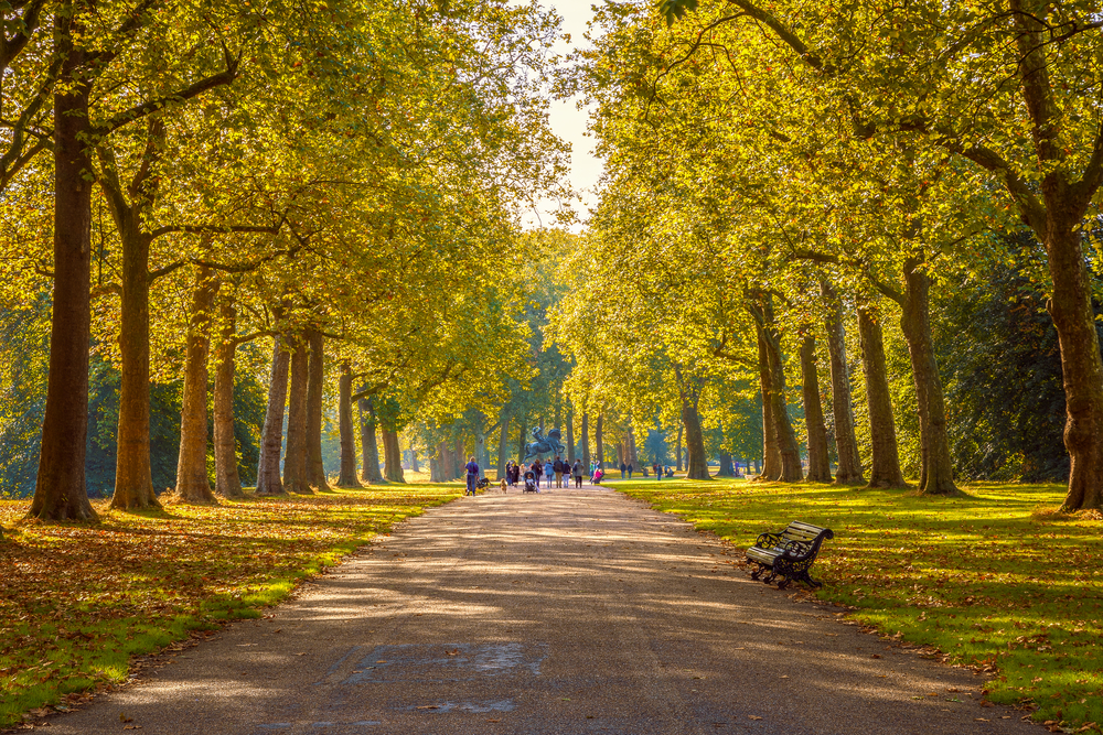 THE GREAT PICNICKING SPOTS OF LONDON